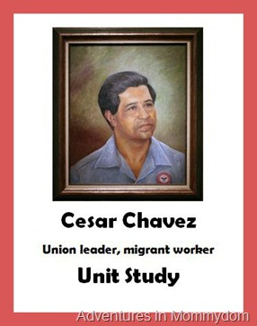 cesar chavez essay cesar chavez essay custom research papers for  cesar chavez essays iago essayscesar chavez essay admissions essay editing