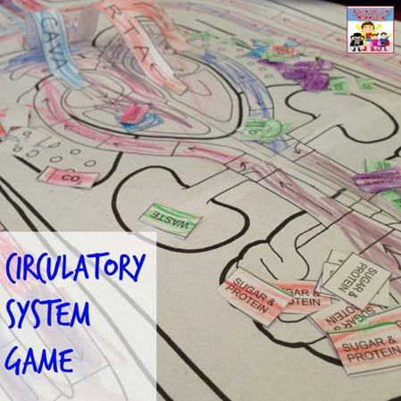 Circulatory System game