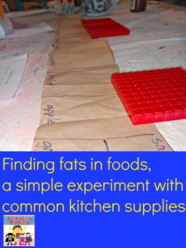 finding fats in foods