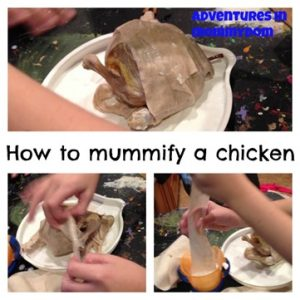 Science Sunday: Chicken Mummy