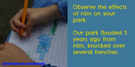 observe the effects of rain on your park