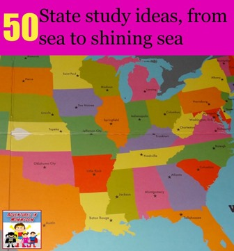50 state study ideas