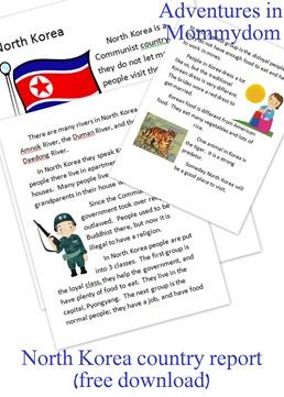 North Korea country report