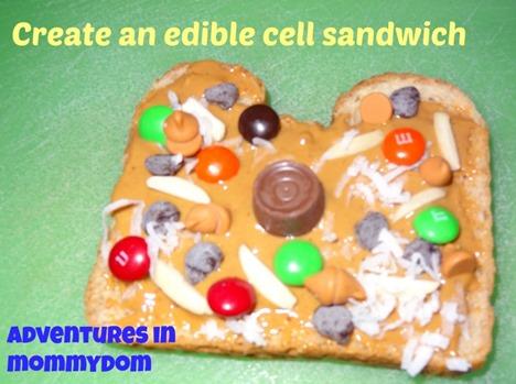create an edible cell sandwich
