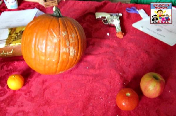 pumpkin science do all fruit float